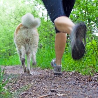 Considerations when Running with Your Pup
